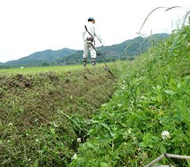 草刈り・伐採・害虫駆除